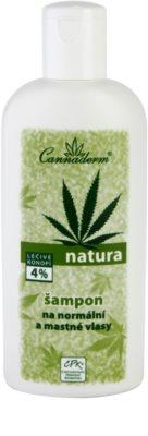 Cannaderm Natura Shampoo für normales bis fettiges Haar