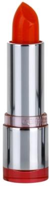 Catrice Ultimate Lip Colour Intensificador
