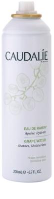 Caudalie Cleaners&Toners spray pe baza de apa pentru reimprospatare pentru toate tipurile de ten, inclusiv piele sensibila 1