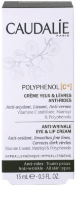 Caudalie Polyphenol C15 creme para contorno de olhos e lábios antirrugas e anti-olheiras 2