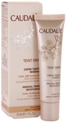 Caudalie Teint Divin mineralische, feuchtigkeitsspendende Tönungscreme 2