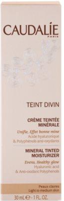 Caudalie Teint Divin mineralische, feuchtigkeitsspendende Tönungscreme 3