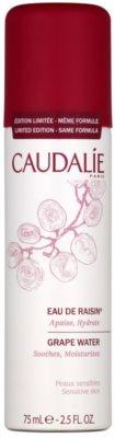 Caudalie Vinosource Traubenwasser zur Feuchtigkeitsversorung und Beruhigung der Haut im Spray
