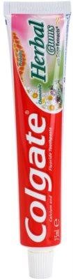 Colgate Herbal Gums fogkrém gyógynövényekkel az egészséges fogakért és ínyért
