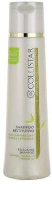 Collistar Speciale Capelli Perfetti champú para cabello dañado, químicamente tratado
