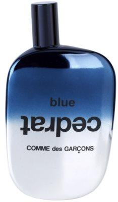 Comme Des Garcons Blue Cedrat Eau de Parfum unissexo 2