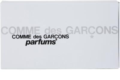 Comme Des Garcons Miniatures Collection set cadou 3