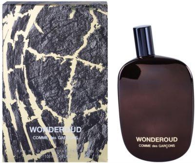 Comme Des Garcons Wonderoud eau de parfum unisex