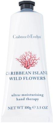 Crabtree & Evelyn Caribbean Island Wild Flowers crema hidratanta de maini