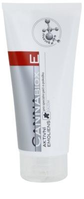 CutisHelp Medica CannaBiox E Aktiv-Emulsion bei allergischer Haut und dem Auftreten von Ekzemen