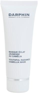 Darphin Professional Care verjüngende Gesichtsmaske für klare und glatte Haut