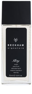 David Beckham Signature for Him Story deodorant s rozprašovačem pro muže