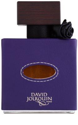 David Jourquin Cuir Altesse parfumska voda za ženske 2