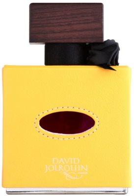 David Jourquin Cuir Solaire parfumska voda uniseks 2