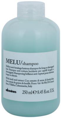 Davines Melu Lentil Seed champú suave para cabello dañado y frágil