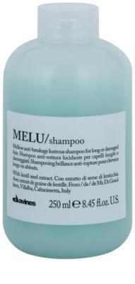 Davines Melu Lentil Seed sanftes Shampoo für beschädigtes und brüchiges Haar