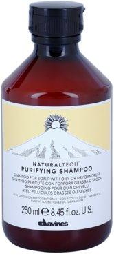 Davines Naturaltech Purifying das Reinigungsshampoo gegen Schuppen