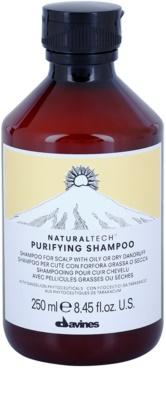Davines Naturaltech Purifying почистващ шампоан против пърхот