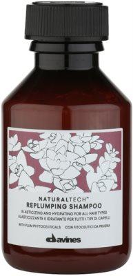 Davines Naturaltech Replumping sampon hidratant pentru toate tipurile de par