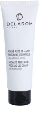 Delarom Body Care creme refrescante e aromático de pés com extratos vegetais
