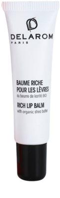 Delarom Essential Lippenbalsam mit biologischer Sheabutter
