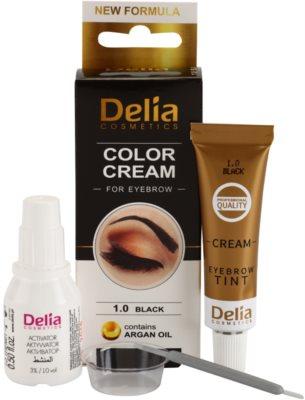 Delia Cosmetics Argan Oil Farbe für die Augenbrauen 1