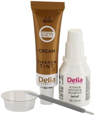 Delia Cosmetics Argan Oil Farbe für die Augenbrauen 2