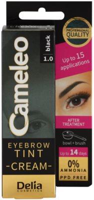 Delia Cosmetics Cameleo Coloração cremosa profissional para sobrancelhas sem amoníaco