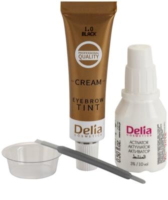 Delia Cosmetics Cameleo tinte cremoso profesional para cejas sin amoníaco 2