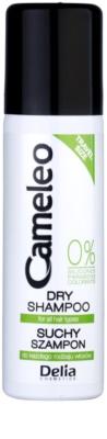 Delia Cosmetics Cameleo champú en seco para dar volumen