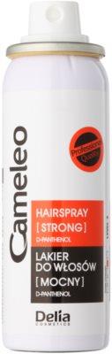 Delia Cosmetics Cameleo lak na vlasy se silnou fixací 1
