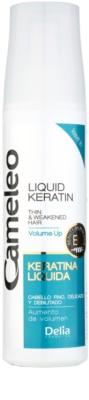 Delia Cosmetics Cameleo BB flüssiges Kreatin im Spray für sanfte und müde Haare