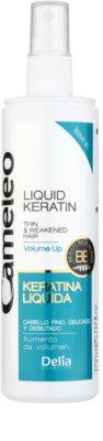 Delia Cosmetics Cameleo BB flüssiges Kreatin im Spray für sanfte und müde Haare 1