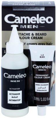 Delia Cosmetics Cameleo Men tinte para barba y bigote 1