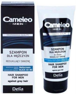 Delia Cosmetics Cameleo Men champô para cabelos grisalhos 1