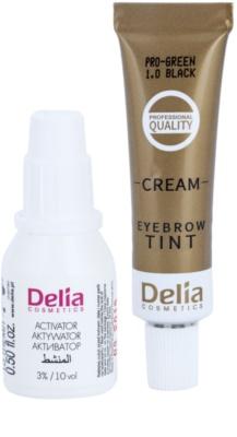 Delia Cosmetics Cameleo Pro Green barva na obočí bez amoniaku 2