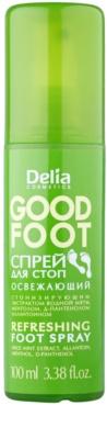 Delia Cosmetics Good Foot frissítő lábspray