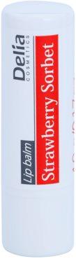 Delia Cosmetics Lip Balm Strawberry Sorbet зволожуючий бальзам для губ