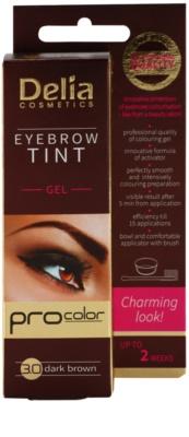 Delia Cosmetics Pro Color gel de cor profissional para sobrancelhas sem amoníaco