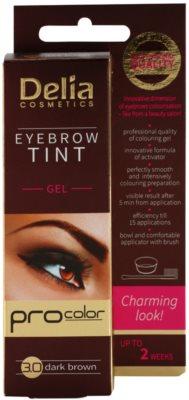 Delia Cosmetics Pro Color professionelle Gel-Creme für die Augenbrauen ohne Ammoniak