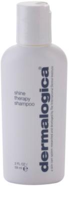 Dermalogica Hair Care sampon a fénylő és selymes hajért