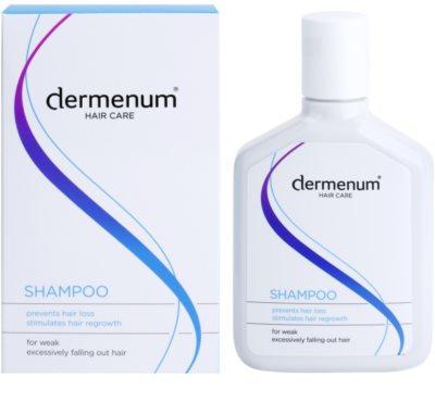Dermenum Hair Care Shampoo für das Wachstum der Haare und die Stärkung von den Wurzeln heraus 1