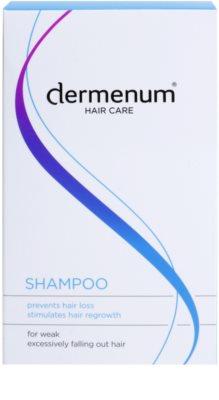 Dermenum Hair Care Shampoo für das Wachstum der Haare und die Stärkung von den Wurzeln heraus 2
