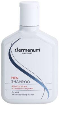 Dermenum Hair Care Men champô reforçador anti-queda capilar