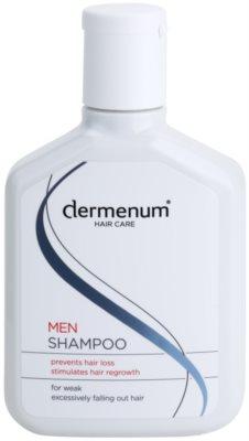 Dermenum Hair Care Men stärkendes Shampoo gegen Haarausfall