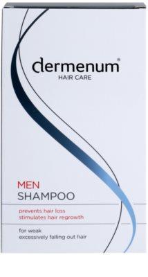 Dermenum Hair Care Men šampon za okrepitev las proti izpadanju las 2