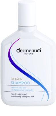Dermenum Hair Care Repair champô contra a queda de cabelo com ativador do crescimento