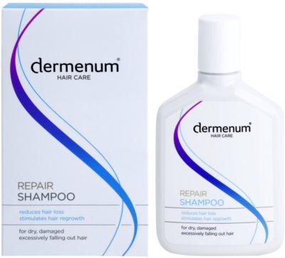 Dermenum Hair Care Repair champô contra a queda de cabelo com ativador do crescimento 1