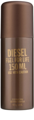 Diesel Fuel for Life Homme deospray pro muže