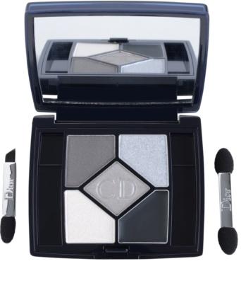 Dior 5 Couleurs Designer Palette mit Lidschatten 1